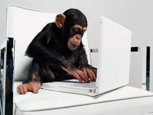 Funny Geeky Animals Using Computers