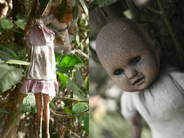 Horror Video Of Haunted Dolls On Island