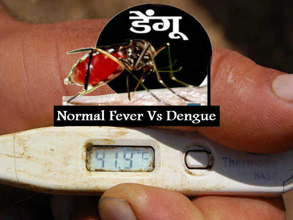 Difference Between Normal Fever And Dengue Fever