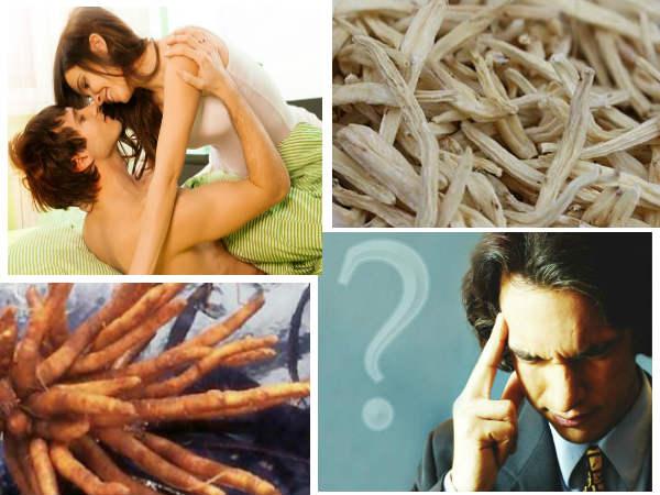 Benefits White Musli