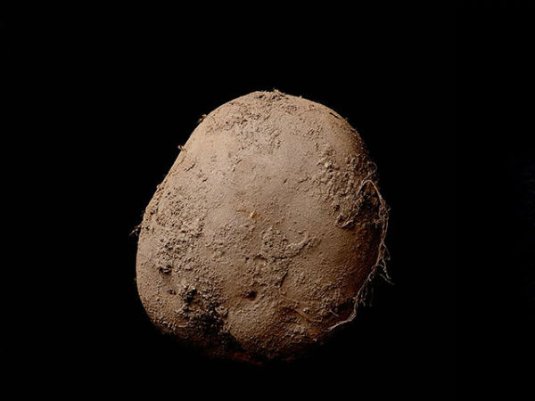 This Photo A Potato Sold Over 10 Lakh Dollar