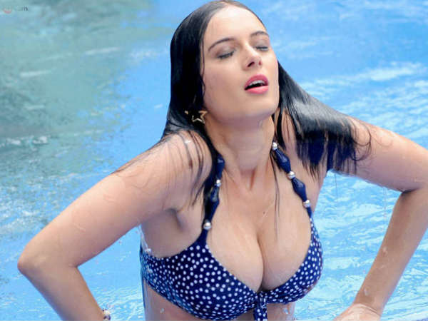Evelyn Sharma To Star In A Hollywood Movie