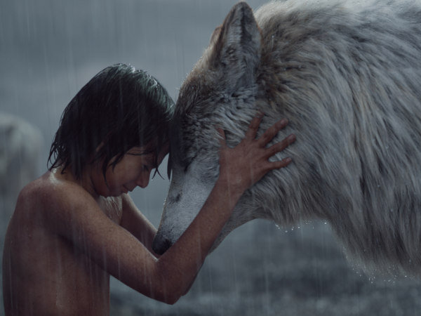 The Jungle Book Box Office Collection May Surpass Airlift