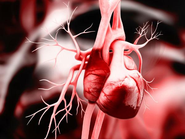 Ayurvedic Treatment Heart Blockage
