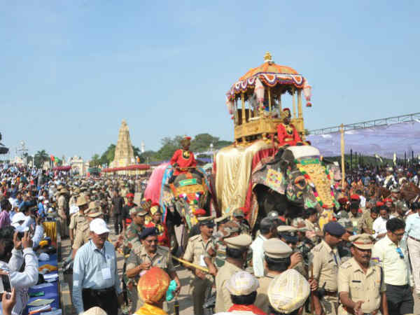 Mysuru Dasara Elephants Get Insurance Cover