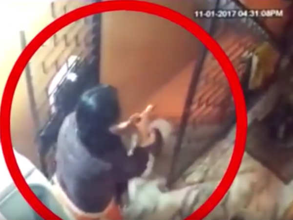 Video Delhi Mother Throws Son Down The Stairs After Fight In Laws
