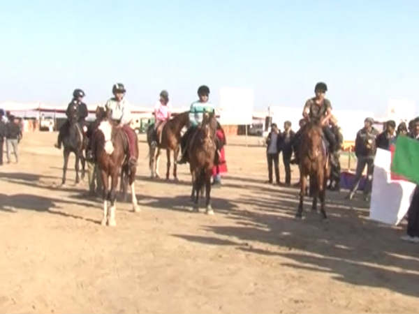 Gujarat Near Nadabet Unique Horse Festival Celebrated