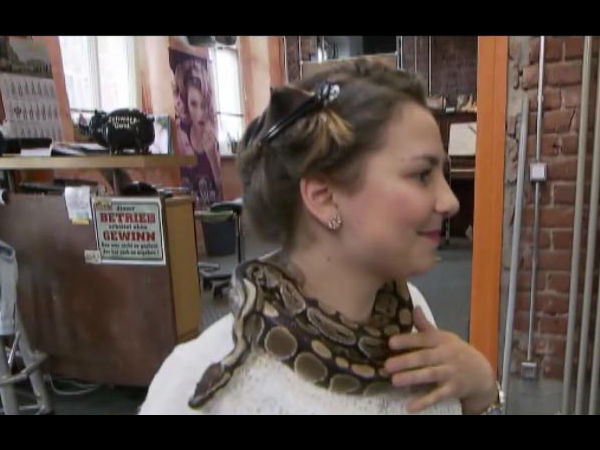 Viral Video Python Giving Neck Massages Customers