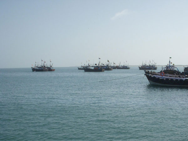 Pakistan Marines Capture 42 Indian Fishermen