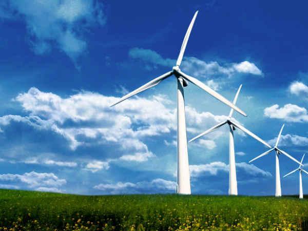 Junagadh Pil Gujarat High Court Against Windmill Gir Talaj