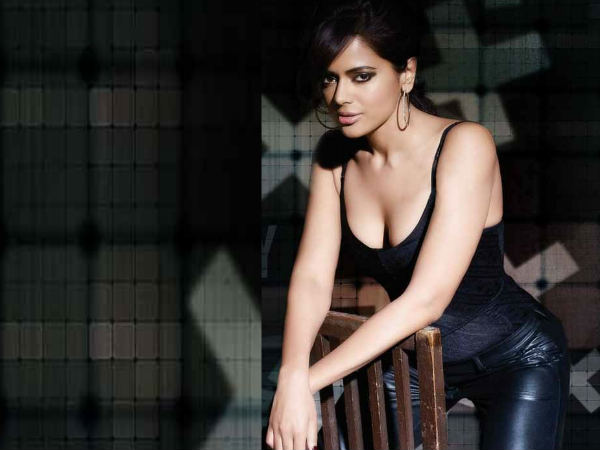 Salman Khan Shahrukh Khan Has Competition With Sameera Reddy