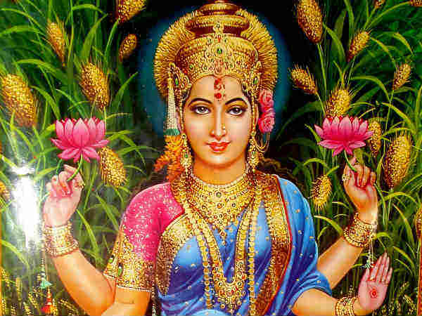 Friday Is The Day Maa Lakshmi She Is Very Kind