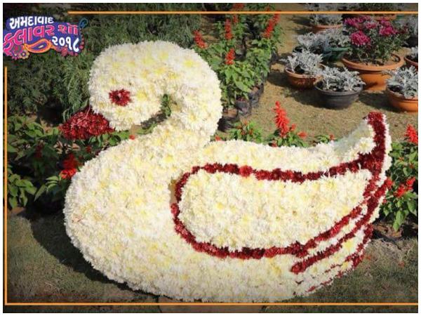 Celebrate New Year Eve Ahmedabad Visit Historical Flower Sho