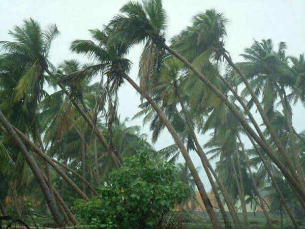 Ockhi Cyclone Weakened Did Not Enter South Gujarat
