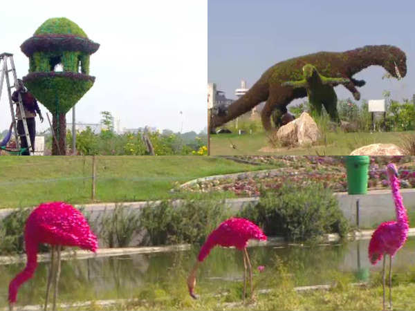 Flower Show At Ahmedabad On Heritage Ahmedabad Theme See He