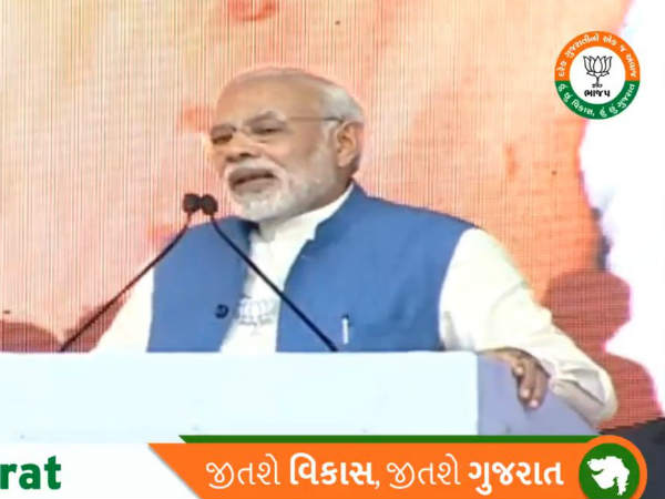 Gujarat Elections Pm Narendra Modi Netrang Read Here His Speech