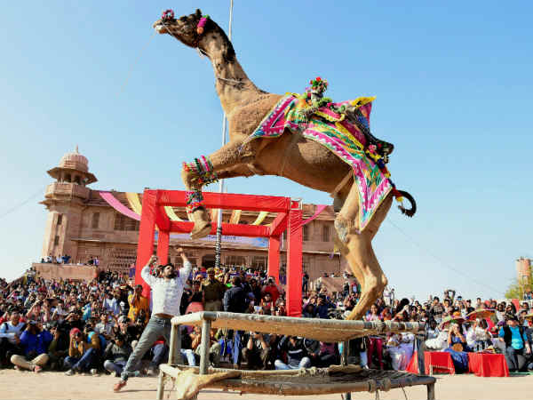 Photos How Various State India Celebrate Uttarayan Makar Sankranti
