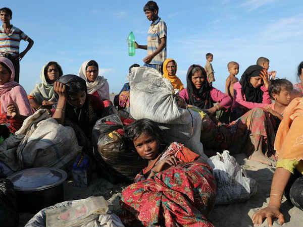 Organisations Are Trying Settle Down 40 000 Rohingyas West Bengal