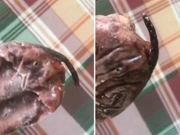 Watch Video Woman In China Says She Found Dead Rat In Her Icecream