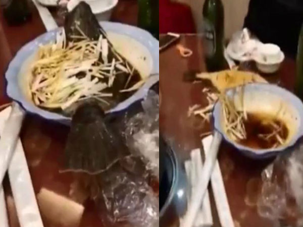 Video Fish Comes Back Life On Restaurant Table Despite Being Cooked
