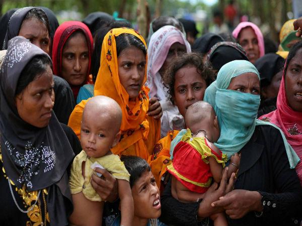 Amnesty Said Rohingya Extremists Had Done The Massacre Of Hindu