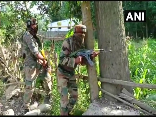 Terrorist Has Been Killed Forest Area Of Kupwara S Handwara