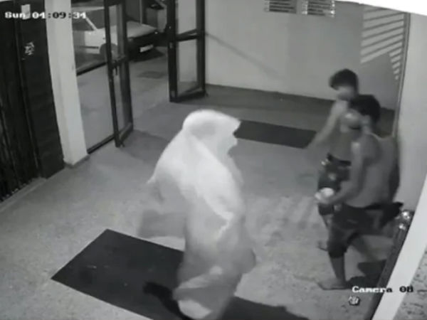Thief Started Dancing After They Seen Cctv Camera