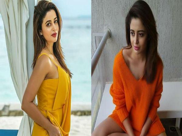 Bigg Boss 12 Ex Contestant Neha Pendse Bold Pic Viral