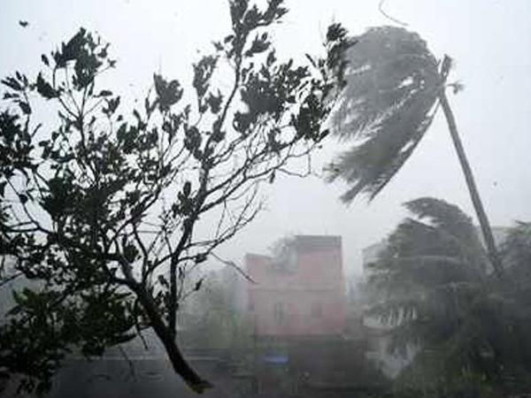 People Died Due Cyclone Titli