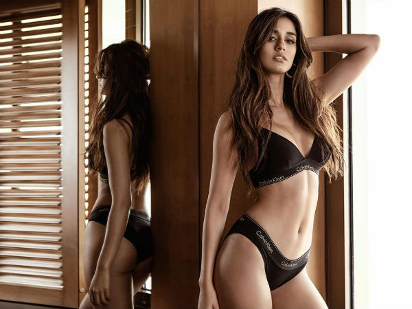 Hot Pictures Disha Patani Gone Viral