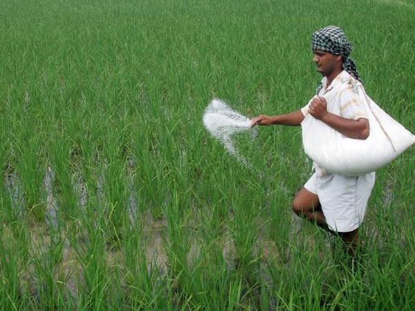 Govt S Msp Initiative A Boon To Farmers