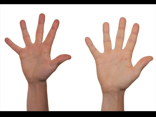 How The Length Finger Reveal Your Sexual Life