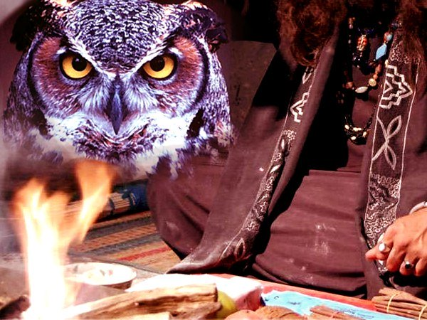 Married Man Kills Owl To Perform Black Magic For Attracting Woman In Delhi