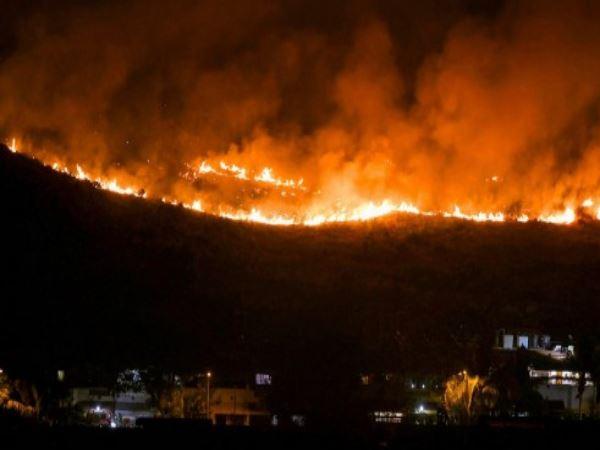 Mumbai Massive Fire Breaks In Aarey Colony Near Film City
