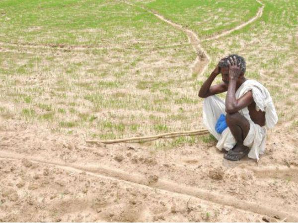 Farmers Gujarat Hit Waive Gujarat Govt Denies Debt Relief