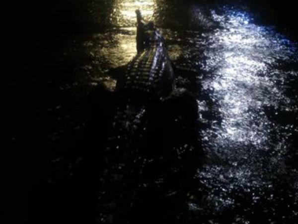 Crocodiles Snakes The Streets As Floodgates Open Queensland Australia