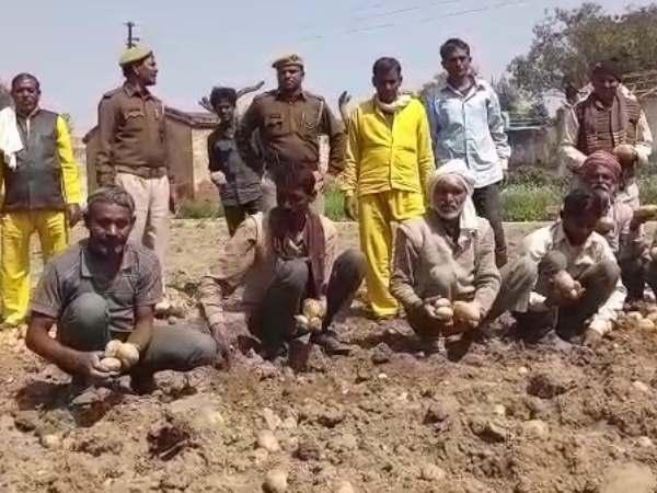 Etah District Jail Prisoner Organic Farming