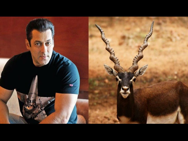 Black Buck Poaching Case Salman Khan Appeal Against Verdict Hearing Today