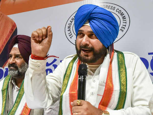 Loksabha Elections 2019 Navjot Singh Sidhu Says If Rahul Gandhi Loses From Amethi Will Quit Politics