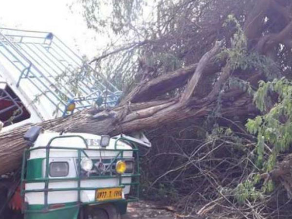Thunderstorm Alert In Isolated Places In India Rains Kills 28 People