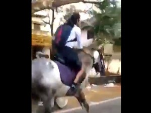 Girl Riding Horse To School Video Goes Viral Anand Mahindra Says She Is My Hero