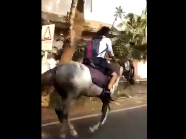 This Is Why Kerala Girl Rode To School By Horse Told The Reason