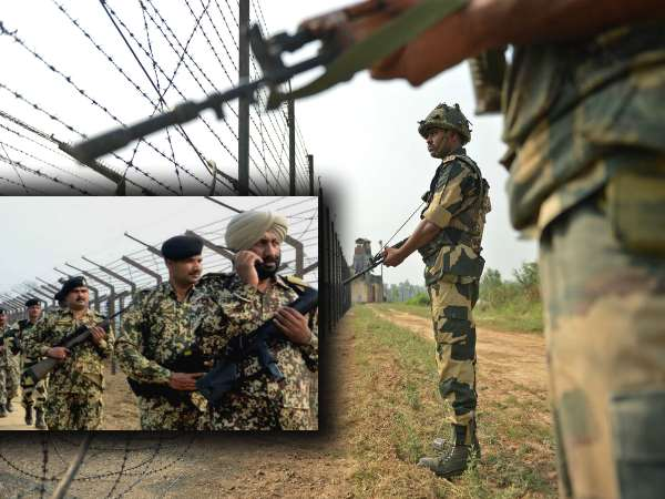 Bsf Apprehended Pakistani National Near International Boundary In Kutch Gujarat