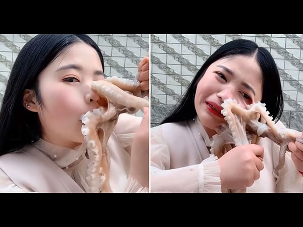 Video Of Octopus Getting Stuck On Girl S Face When She Tried To Eat It Alive