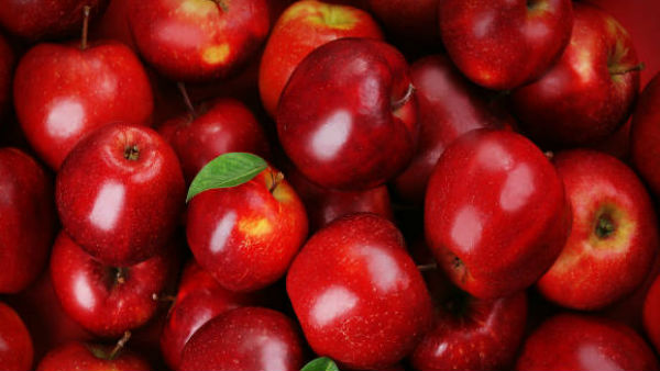 Research An Apple Contains More Than 100 Million Bacteria