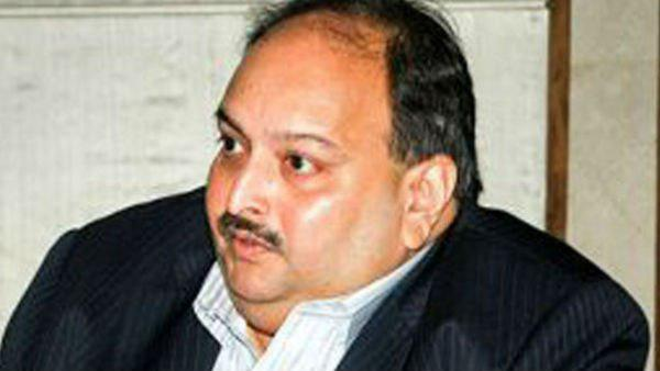 Ed Seized Property Worth 24 Crore Of Mehul Choksi
