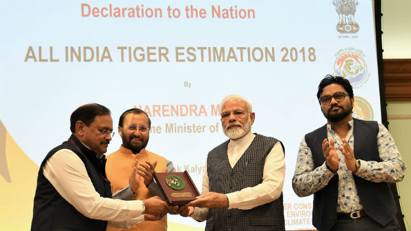 International Tigers Day Pm Modi Releases The Number Of Tiger In India