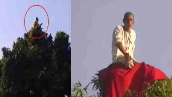 'બંદરિયા બાબા' થી પોલીસ પરેશાન, 200 ફુટ ઉપર ઝાડ પર રહે છે