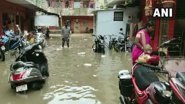 Gujarat Heavy Rains Lead To Flash Floods In Vadodara 6 Dead School College Closed Today