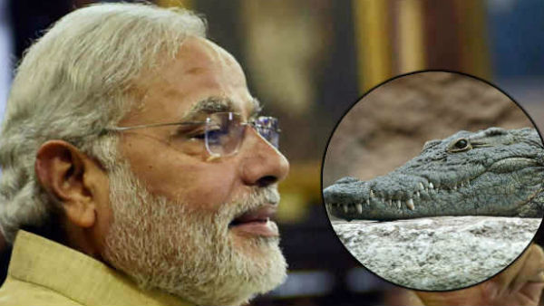 Birthday Special When Child Narendra Caught Crocodile
